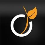 logo_viadeo-150x150